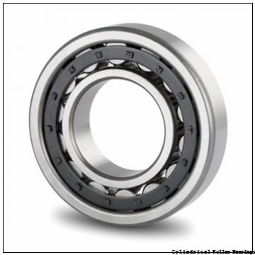 50 mm x 130 mm x 31 mm  FAG NU410-M1  Cylindrical Roller Bearings