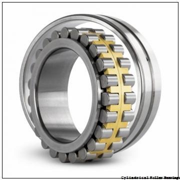 100 mm x 215 mm x 47 mm  FAG N320-E-M1  Cylindrical Roller Bearings