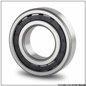 55 mm x 100 mm x 21 mm  FAG NJ211-E-TVP2  Cylindrical Roller Bearings
