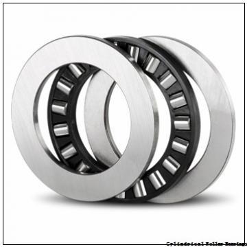 90 mm x 190 mm x 43 mm  FAG NJ318-E-TVP2  Cylindrical Roller Bearings