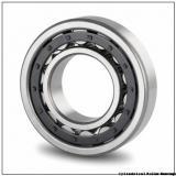 3.15 Inch | 80 Millimeter x 5.512 Inch | 140 Millimeter x 1.75 Inch | 44.45 Millimeter  NTN MA5216EX  Cylindrical Roller Bearings