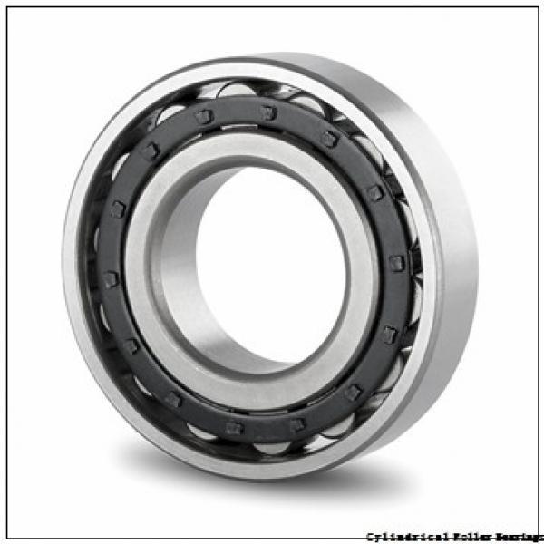 FAG NU324-E-M1-F1-C4  Cylindrical Roller Bearings #1 image