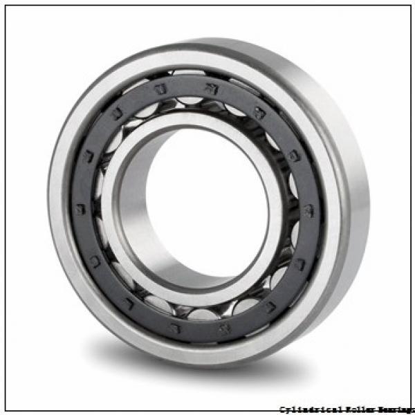 FAG NJ204-E-TVP2-C3  Cylindrical Roller Bearings #2 image