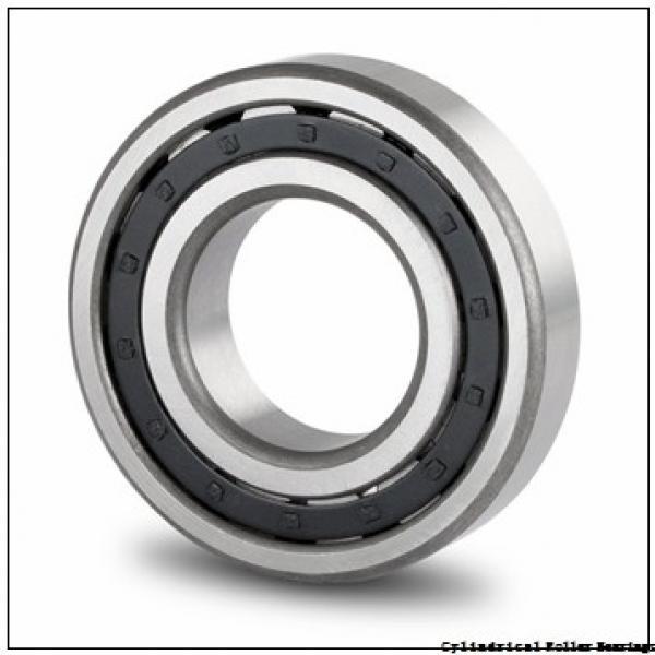 FAG NJ205-E-M1  Cylindrical Roller Bearings #3 image